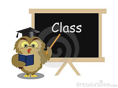 Owl taking class