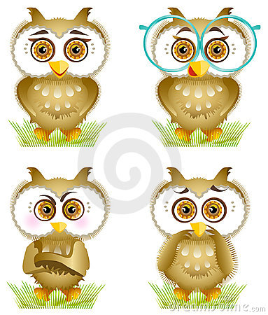 Owls in the grass