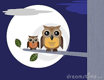 Owls and Moon