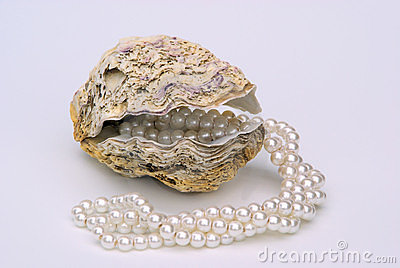 Oyster with pearl necklet