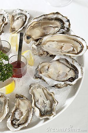 Free Oysters Stock Photo - 25929730