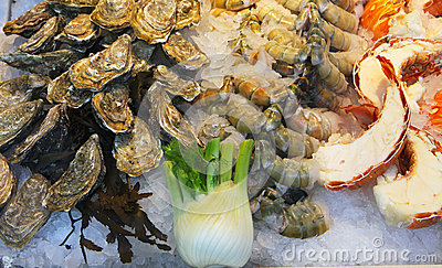 Oysters and lobster in display at fishmarket