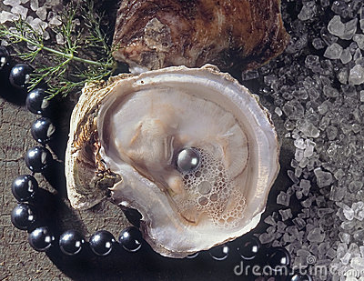 Oysters with Pearl