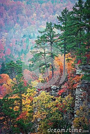 Free Ozark Color Stock Image - 1009611