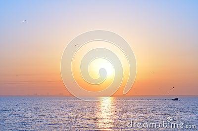 Ozeansonnenaufgang und -vögel