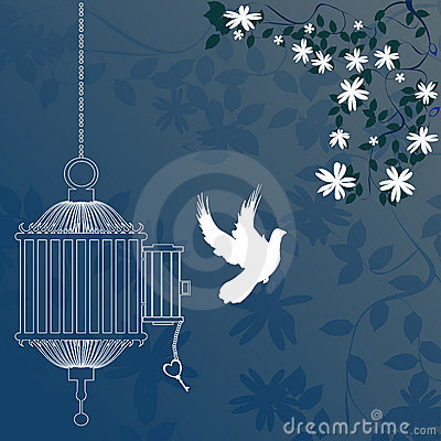 Pássaro e gaiola