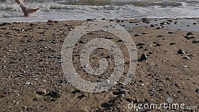 Pé desencapado de passeio do homem caucasiano no Sandy Beach na onda do mar filme