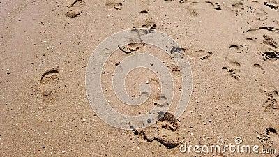 Pé desencapado de passeio no Sandy Beach filme