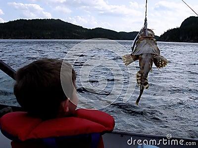 Pêche dans le bateau