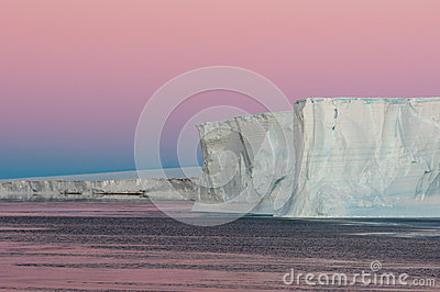 Púrpura polar