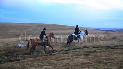 Paard en Voshonden, Dartmoor, Devon