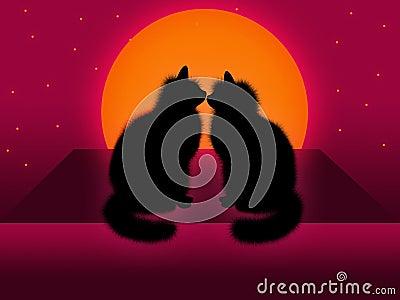 Paare der Katzen