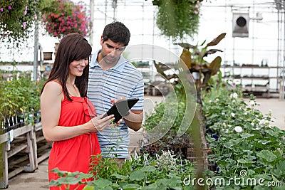 Paare mit Digital-Tablette im Gewächshaus