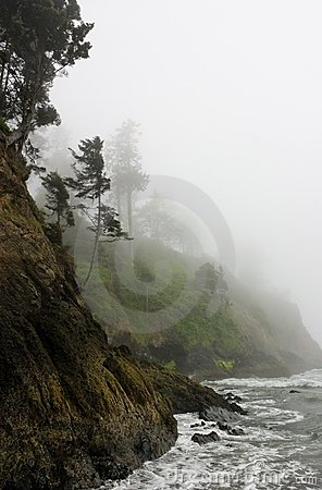 Pacific Coast rocky rugged shoreline in misty fog