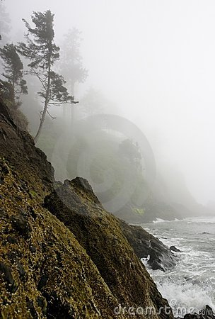 Pacific Coast rugged cliff shoreline misty mystery