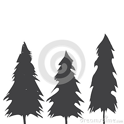 Free Pacific Northwest Old Growth Evergreen Tree Stock Images - 69365624