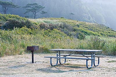 Pacific northwest picnic table area
