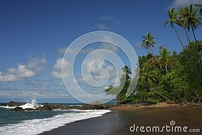 A pacific ocean beach