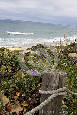 Pacific Ocean Beach at Del Mar, California