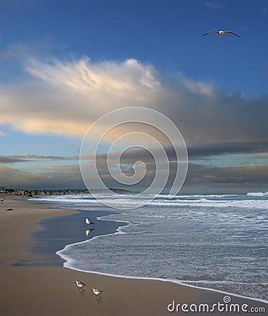 Free Pacific Ocean, San Diego, California Royalty Free Stock Photos - 7175358