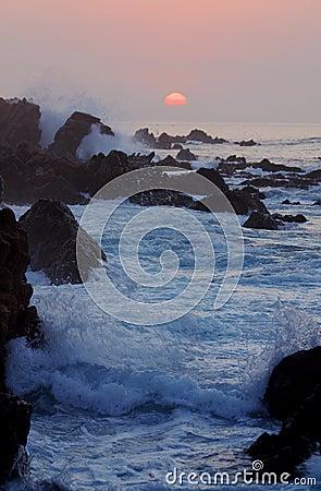 Pacific sea