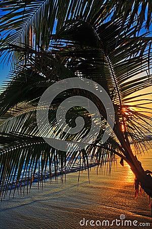 Pacific sunrise at Lanikai beach in Hawaii