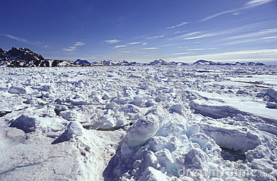 Pack ice Eastern Greenland