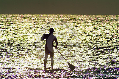 Paddle Board in Sunlit water