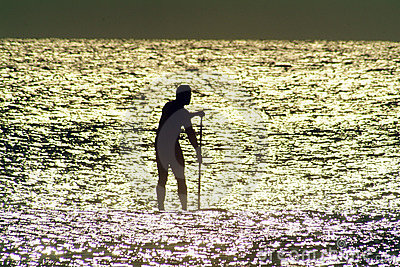 Paddle Board in Sunlit water