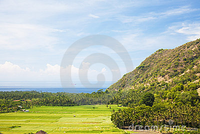 Paddy Field and Coast, Amed, East Bali, Indonesia