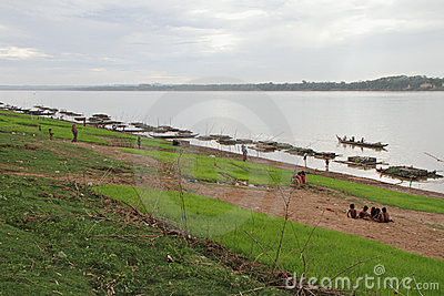Paddy Field And Fish Cages Editorial Stock Image