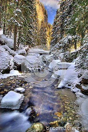 Paesaggio del fiume di inverno