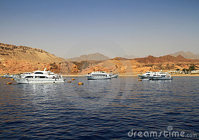 Paesaggio del Mar Rosso