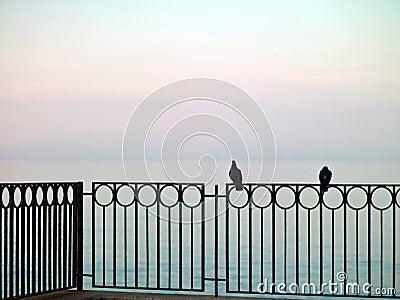 Paesaggio del mare