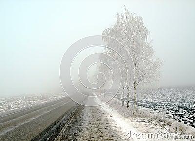 Paesaggio del paese in gelo e nebbia