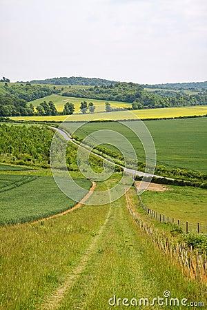Paesaggio inglese con la strada aziendale
