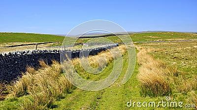 Paesaggio inglese della campagna