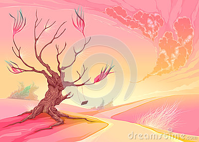 Paesaggio romantico con l albero ed il tramonto