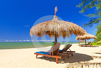 Paesaggio tropicale della spiaggia