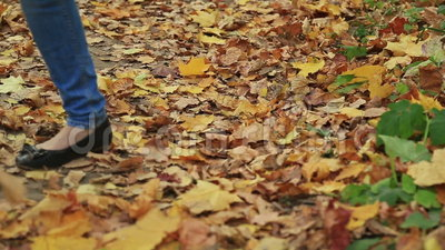 Paese trasversale e traccia di camminata della donna in autunno archivi video
