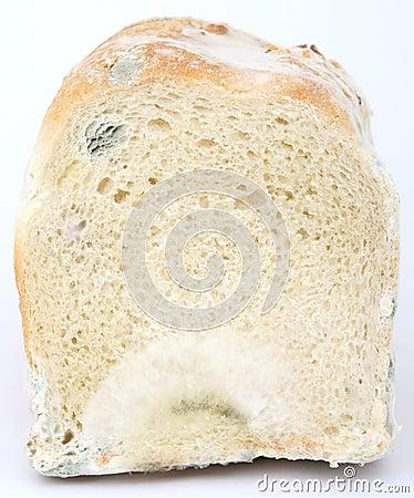 Pagnotta di pane marrone ammuffito