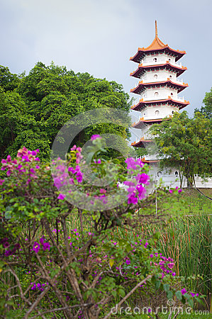 Pagoda in the Chinese garden, Singapore
