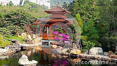 Pagoda en jard n chino del zen almacen de video v deo de for Jardin chino