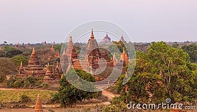 Pagodas hidden in the vegetation