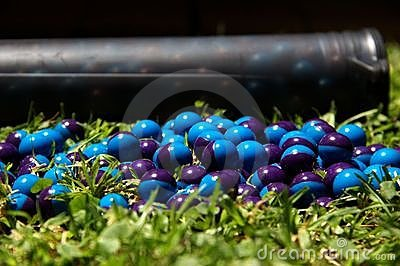 Paintballs on the grass