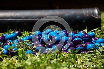 Paintballs on the grass