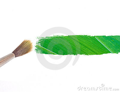 Paintbrush and green leave stripe