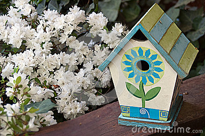 Painted Birdhouse and White Flowers