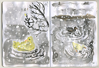 Painted Sketchbook - ducks