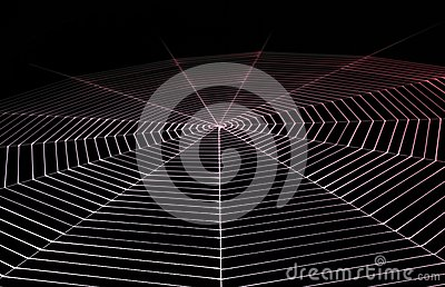 Painted spiderweb